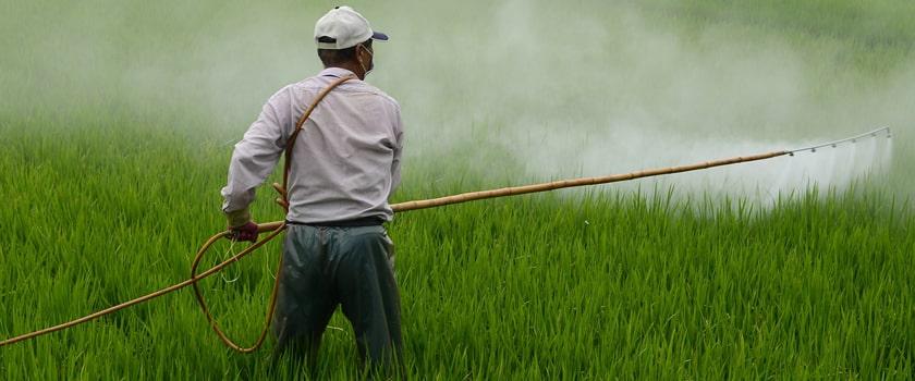 Postřik pesticidy